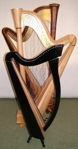 Folk and Pedal Harp Lessons