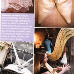 Harpist in Perfect Wedding Magazine - Shelley Fairplay