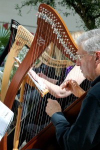 Adult Dynamic Harps Perform at National Botanic Garden of Wales 2014